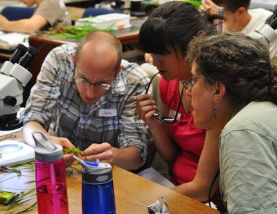 PA Bureau of Forestry botanist Chris Firestone (r) assists workshop students with sedge identification.